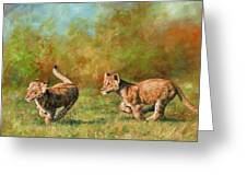 Lion Cubs Running Greeting Card