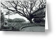 Lion Dog And Tree - Liliuokalani Park - Hawaii Greeting Card