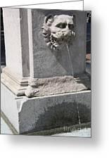 Lion Head Fountain Greeting Card