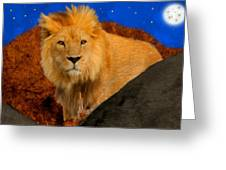 Lion In The Evening Greeting Card