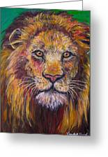 Lion Stare Greeting Card