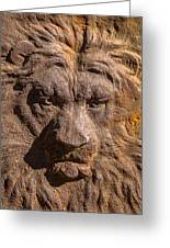 Lion Wall Greeting Card