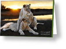 Lioness Protector Greeting Card