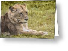 Lioness Resting Greeting Card