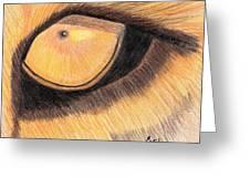 Lions Eye Greeting Card by Bav Patel
