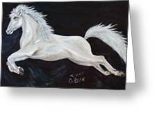 Lipizzaner Capriole Greeting Card