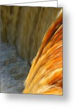 Liquid Amber Greeting Card