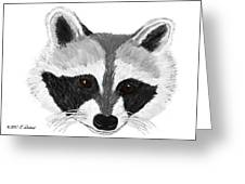 Little Bandit - Raccoon Greeting Card by Elizabeth S Zulauf
