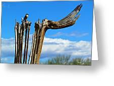Little Bird On Tall Dead Saguaro Greeting Card