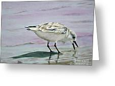 Little Bird On The Beach Greeting Card