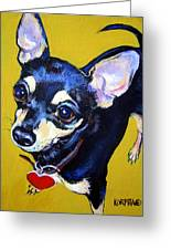 Little Bitty Chihuahua Greeting Card