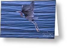 Little Blue Air Greeting Card