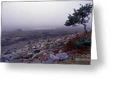 Little Boars Head Beach Greeting Card