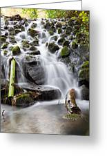 Little Cascade In Marlay Park Dublin Greeting Card