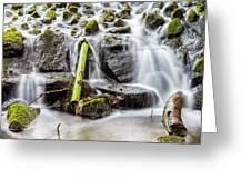 Little Cascade In Marlay Park Greeting Card