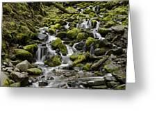 Little Cascades Greeting Card