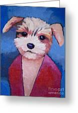 Little Dog Greeting Card by Lutz Baar