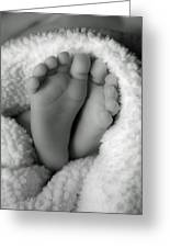 Little Feet Greeting Card by Mamie Thornbrue