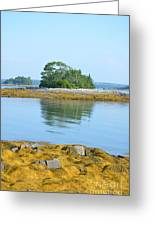 Little French Island In Maine Greeting Card