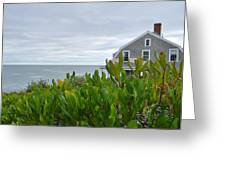 Little House By The Sea Greeting Card