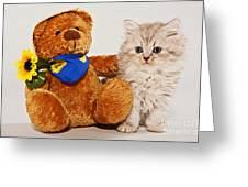 little Kitten with her Teddybear Greeting Card