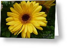 Little Miss Sunshine Greeting Card