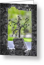 Little Pearl Tree II Greeting Card