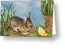 Little Pet Bunny Greeting Card