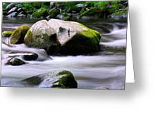 Little Piegon River Gatlinburg Tennessee Greeting Card
