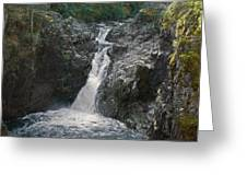 Little Qualicum River Falls Vancouver Island Bc Greeting Card