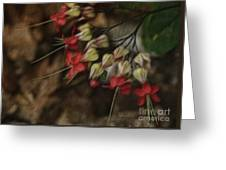 Little Red Flowers Greeting Card
