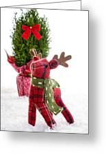Little Reindeer Christmas Card Greeting Card