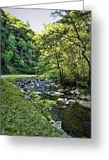 Little River Road Greeting Card