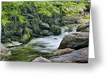Little River Scenery E226 Greeting Card