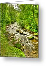 Little River - Smoky Mountains Greeting Card