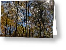 Little Round Top Trees Greeting Card