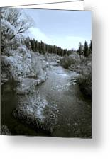 Little Spokane River Beauty Greeting Card