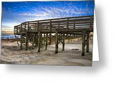 Little Talbot Island Greeting Card