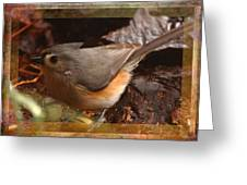 Little Titmouse Greeting Card