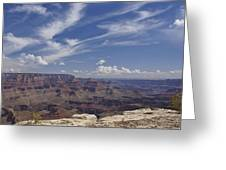 Little Tree...grand Canyon Greeting Card