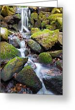Little Waterfall In Marlay Park Greeting Card