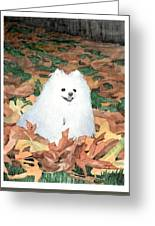 Little White Dog Watercolor Portrait Greeting Card