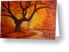 Live Oak At Sunset Greeting Card by Rich Kuhn