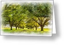 Live Oak Journey Paint Greeting Card