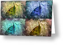 Lives Of A Butterfly Greeting Card
