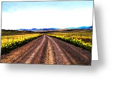 Living On Back Roads Greeting Card