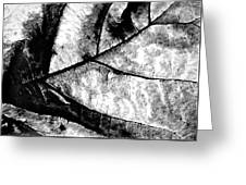 Living Structure I Greeting Card