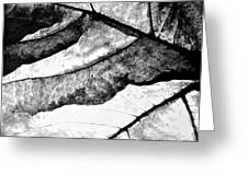 Living Structure IIi Greeting Card