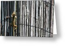 Lizard Art Greeting Card