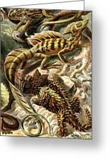Lizard Detail II Greeting Card